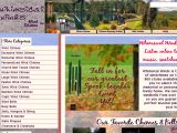 Whimsical Winds Coupon Codes