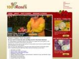 100roses.net Coupon Codes