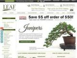 Eastern Leaf Coupon Codes