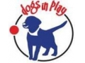 Dogs In Play Coupon Codes