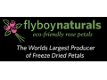 Flyboy Naturals Coupon Codes