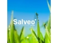 Salveo Coupon Codes