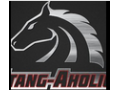 Stang-aholics  Code Coupon Codes