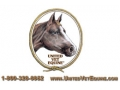United Vet Equine Coupon Codes